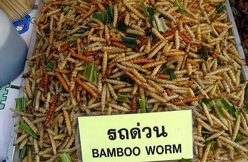 Eating insects in Bangkok